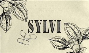 Linkki tapahtumaan PERUTTU | Sylvi by Minna Canth – Soup Troupe & The Really Small Theatre Company